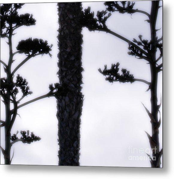 Agave And Palm Metal Print
