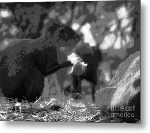 Agouti At Supper Metal Print