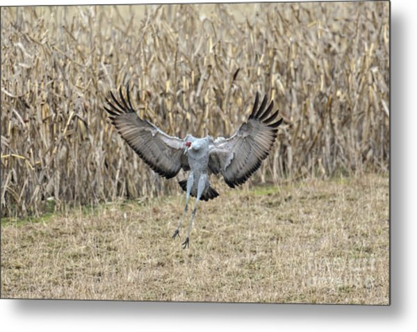 Metal Print featuring the photograph Air Brakes by Craig Leaper