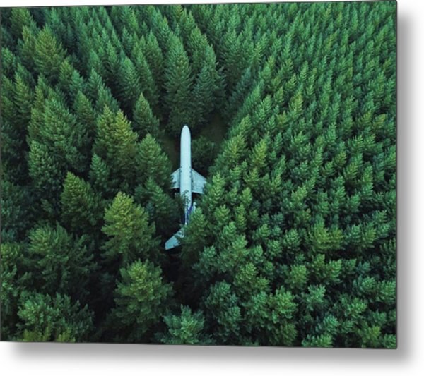 Airplane In Forest Metal Print