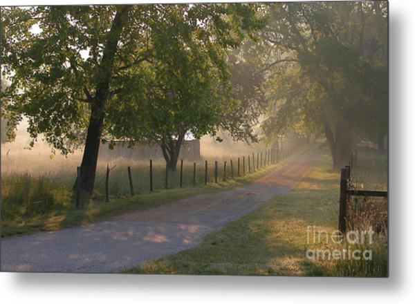 Alabama Country Road Metal Print by Don F  Bradford