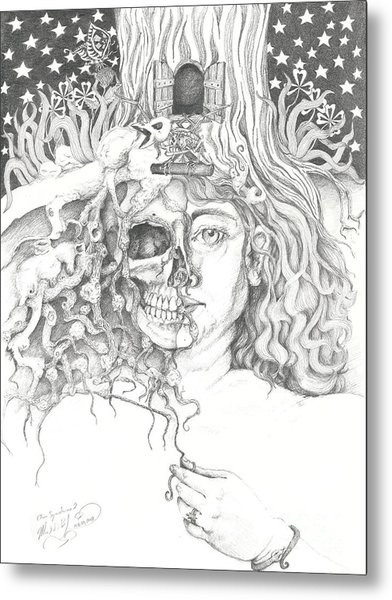 Alice Syndrome 2 Metal Print
