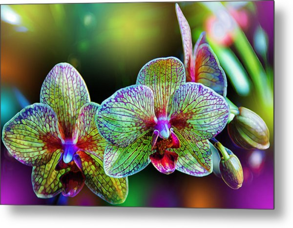 Alien Orchids Metal Print