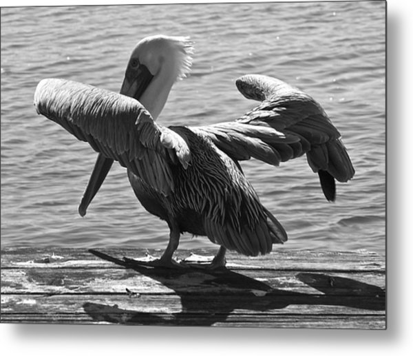 All Clear For Take Off Metal Print by Bonnes Eyes Fine Art Photography