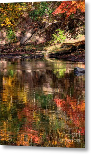 All I See Is Color Metal Print by Tony  Bazidlo