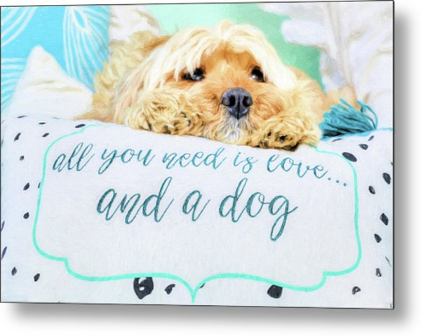All You Need Is Love And A Dog Metal Print by JC Findley