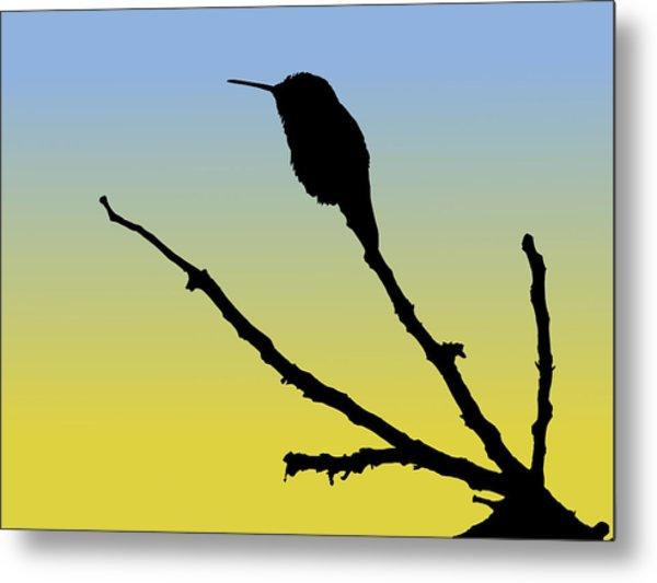 Allen's Hummingbird Silhouette At Sunrise Metal Print