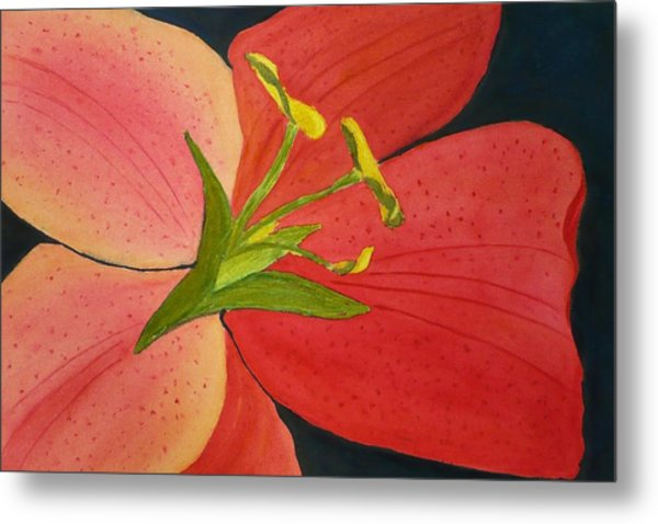 Almost A Tiger Lily Metal Print