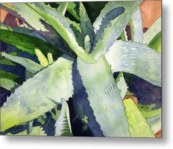 Aloe Metal Print by Eunice Olson