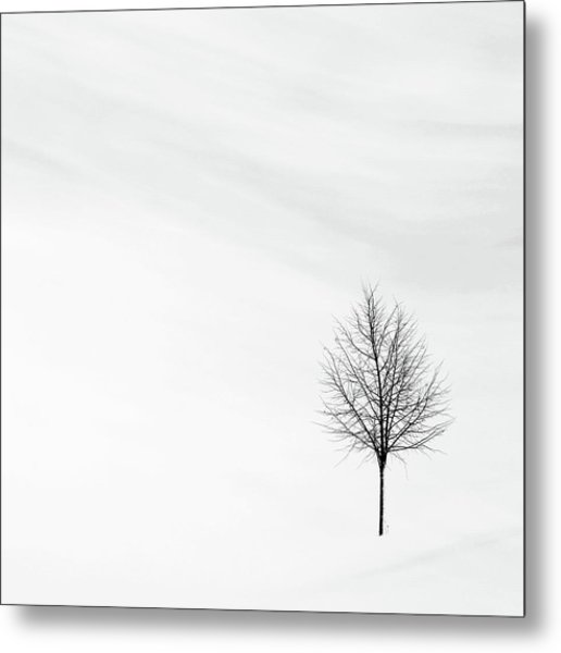 Alone In The Storm Metal Print