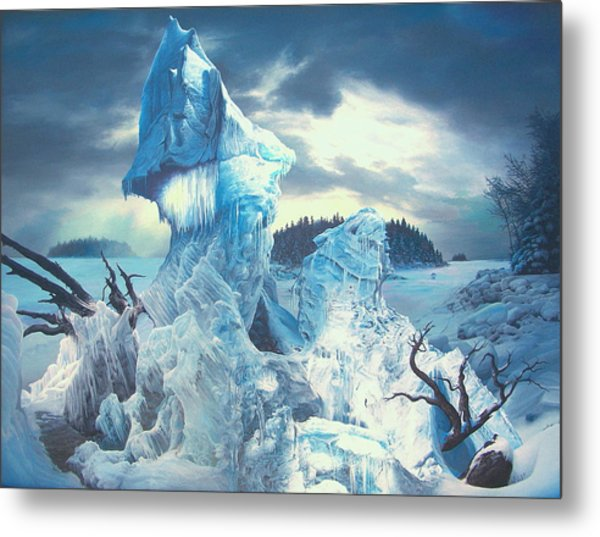 Along The Frozen Lake Metal Print by James McCarthy