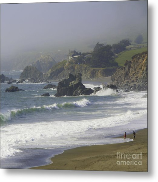 Along The Pacific #2 Metal Print