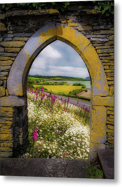 Metal Print featuring the photograph Along The Shannon Estuary by James Truett