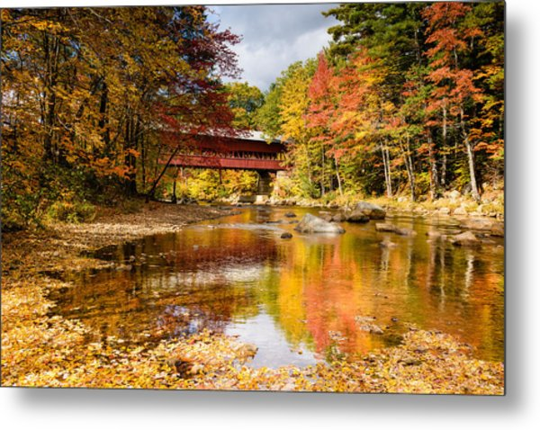 Along The Swift River Metal Print