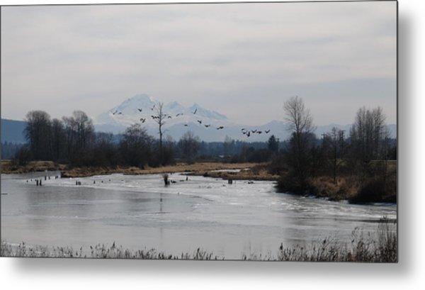 Alouette River Metal Print