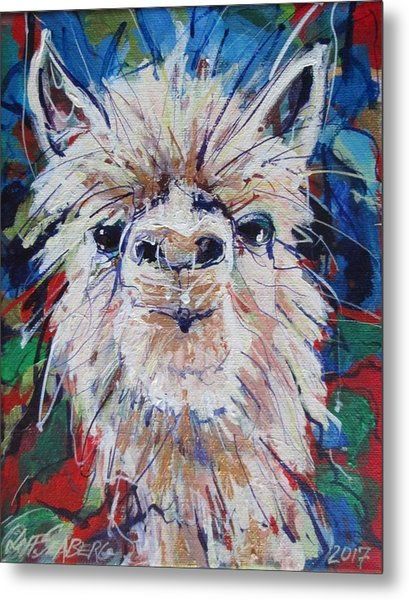 Alpaca Crazed Metal Print