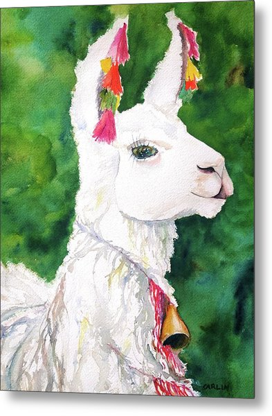 Alpaca With Attitude Metal Print