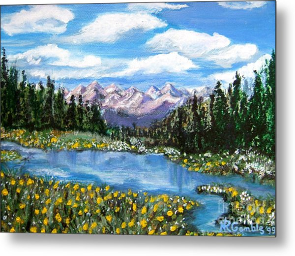 Alpine Lake Colorado Usa Metal Print by Nancy Rucker
