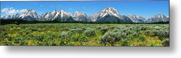 Alpine Meadow Teton Panorama II Metal Print