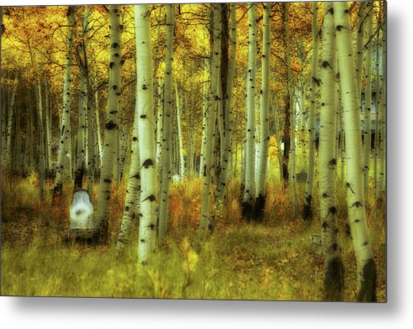 Alvarado Autumn 1 Metal Print