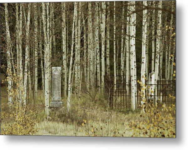 Alvarado Cemetery 42 Metal Print