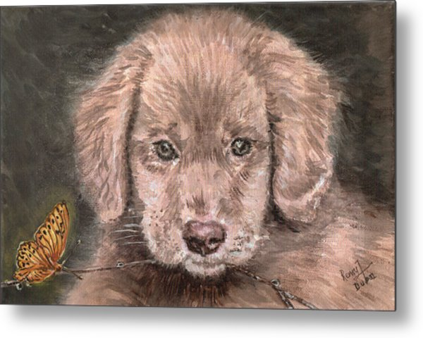 Irish Setter Puppy Dog And Orange Butterfly Metal Print by Remy Francis
