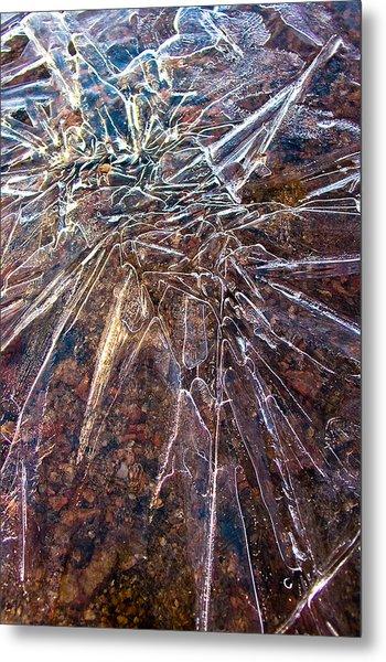 Amazement Metal Print by Marian Kraus