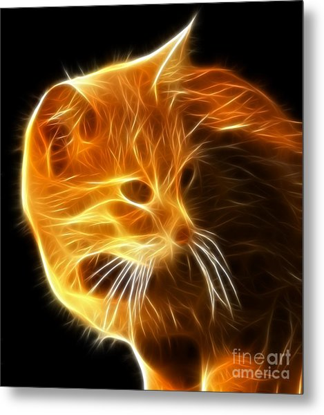 Amazing Cat Portrait Metal Print