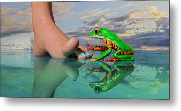 Amazon Tree Frog Curiosity Metal Print