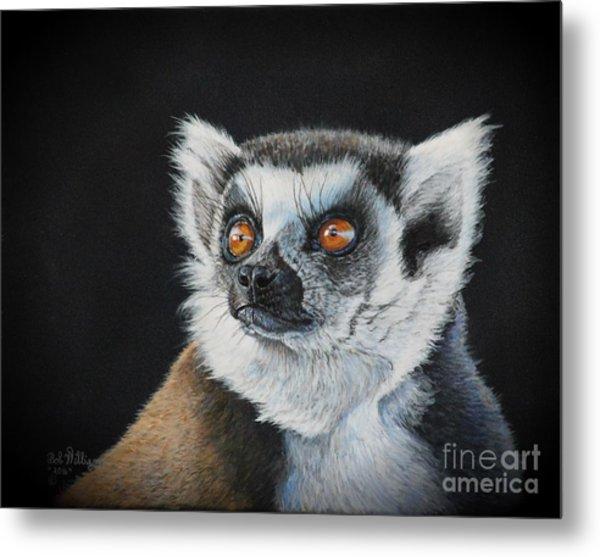 Amber Eyes......lemur Metal Print