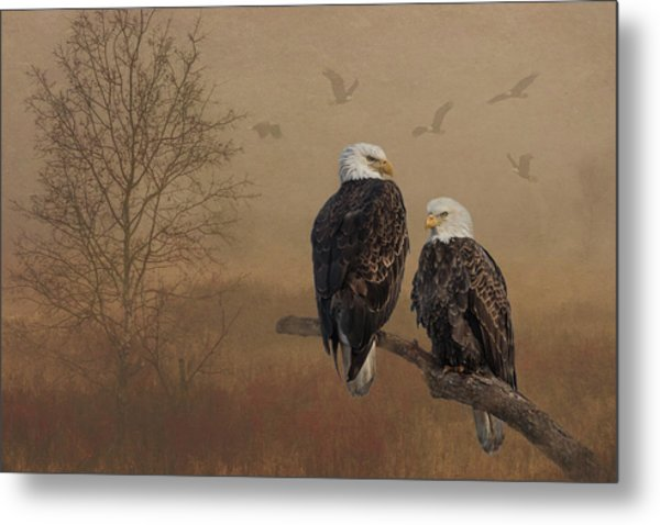 Metal Print featuring the photograph American Bald Eagle Family by Patti Deters