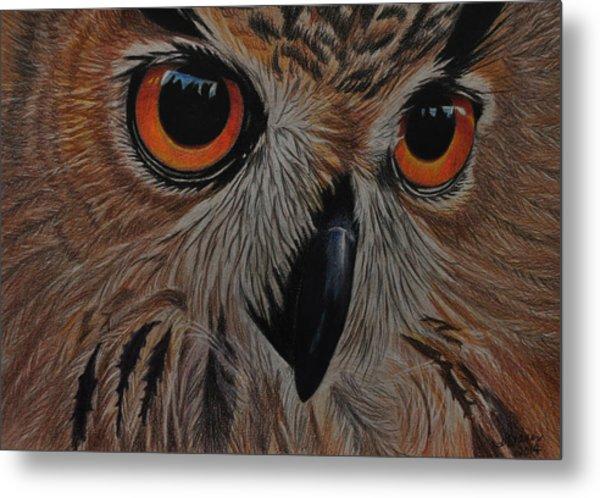 American Eagle Owl Metal Print