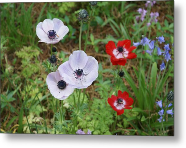 American Flowers Metal Print