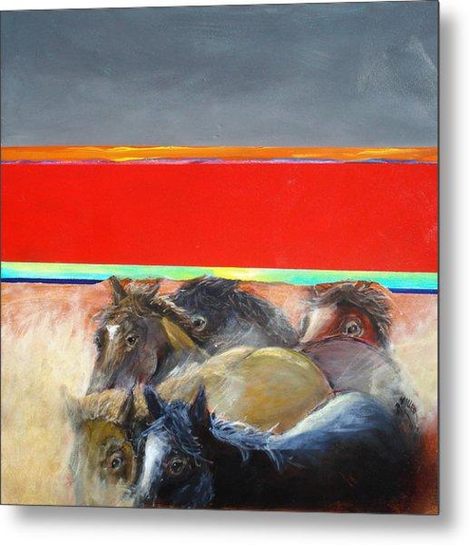 American Wild Horses Herded To Slaughter Metal Print