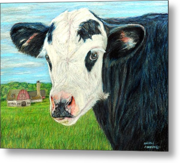 Americana Calf Metal Print by Angela Finney