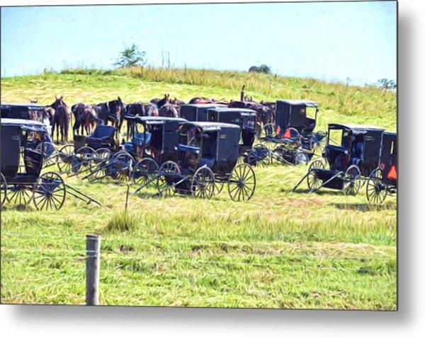 Amish Hillside Metal Print