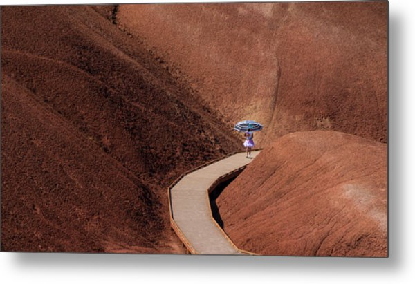 Among The Painted Hills Metal Print