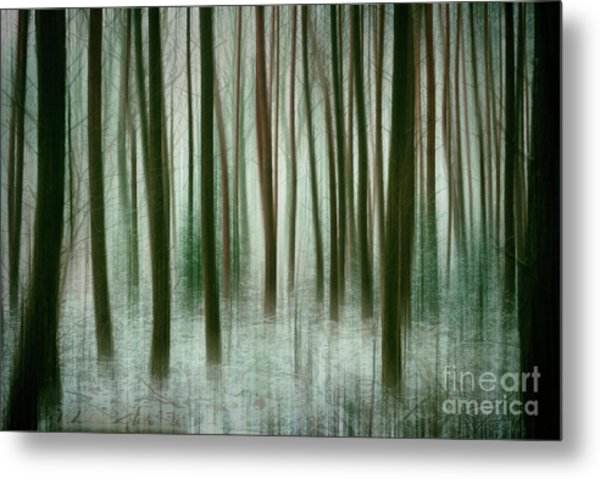 Among The Trees II Metal Print