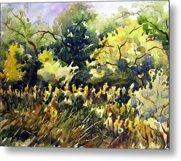 Amongst The Goldenrods Metal Print by Chito Gonzaga