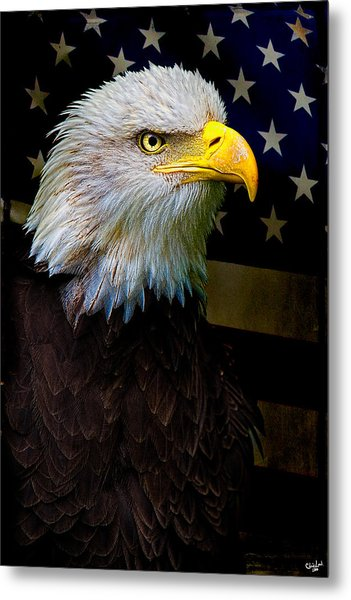 An American Icon Metal Print