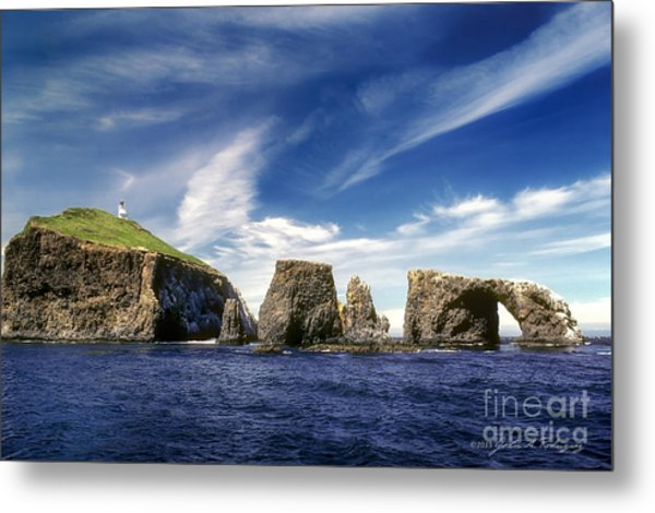 Channel Islands National Park - Anacapa Island Metal Print
