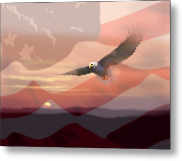 And The Eagle Flies Metal Print