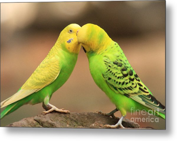 And Then He Kissed Me Metal Print