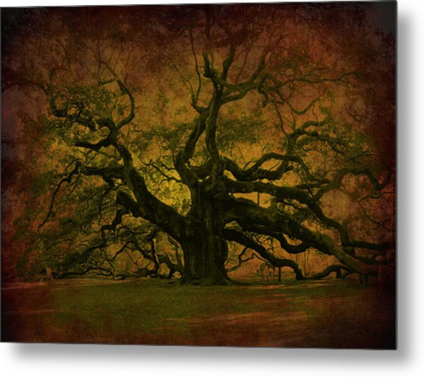 Angel Oak 3 Charleston Metal Print