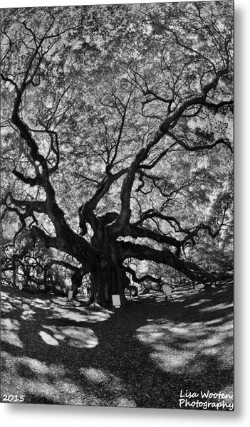 Metal Print featuring the photograph Angel Oak Johns Island Black And White by Lisa Wooten