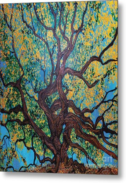 Angel Oak Young Metal Print