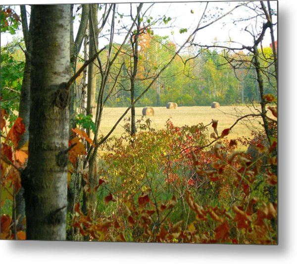 Another Bale Out Metal Print