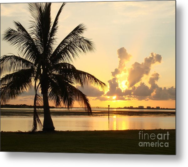 Another Day In Paridise Metal Print by Robyn Leakey