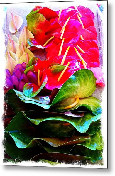 Anthurium  Metal Print