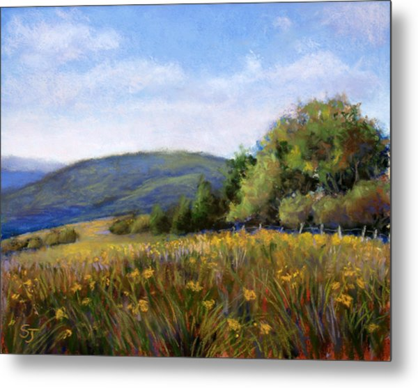 Appalachian Field Metal Print